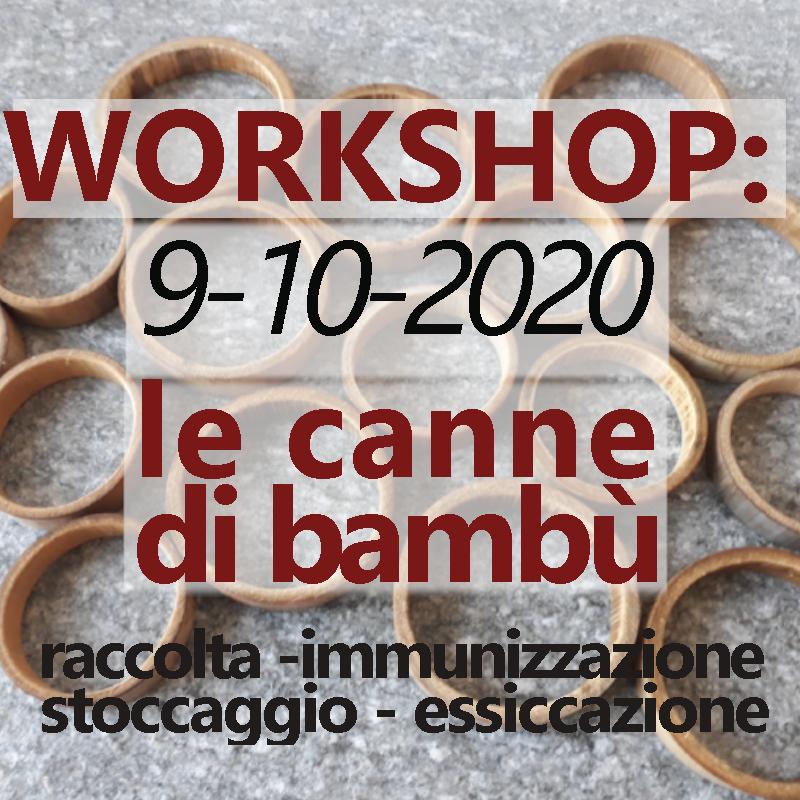 WORKSHOP: Le canne di bambù 10/2020